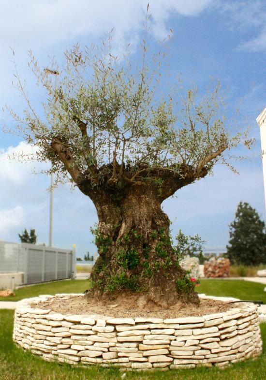 Arredo giardino realizzazione opere in marmo e granito - Arredi per giardino ...
